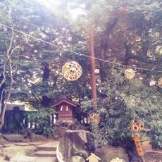 16-08-08-10-39-24-163_photo