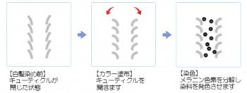 shikumi1
